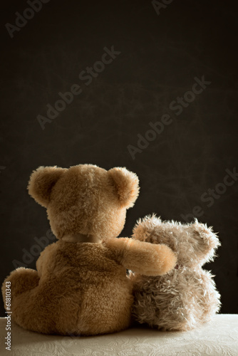Two Teddy Bears