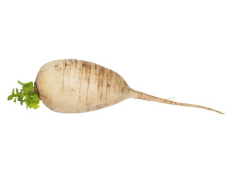 turnip with leaves isolated on white
