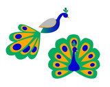 A Stylized Peacock (Front and Side View)