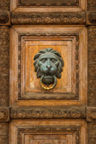 Old wooden door with lion handle