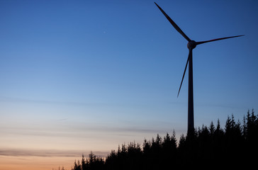 wind power mill over forest