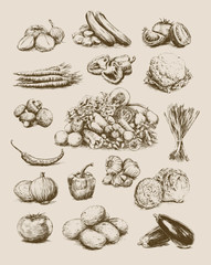Hand Drawn Vegetables Set