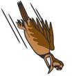 witzig Vogel Absturz Cool lustig Comic