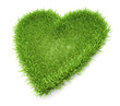 Heart shaped grass patch