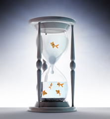 Goldfish inside an hourglass