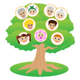 images of family on genealogical tree