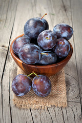 Fresh harvest of plums