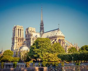 Notre Dame de Paris at sunny day