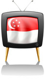 The flag of Singapore inside a television