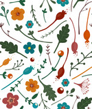Flowers Leaves and Berries Seamless Pattern