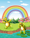 Two playful turtles at the pond with a rainbow in the sky