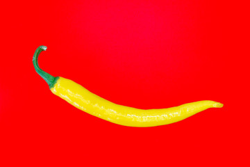 Single yellow spanish pepper
