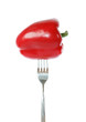 Whole red bell pepper pinned on a fork