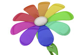 Colorful Flower - 3D