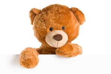 teddy bear behind whiteboard
