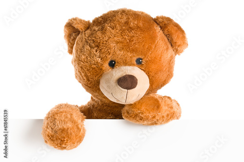 teddy bear behind whiteboard - 61845539