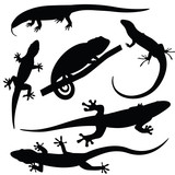 Set of lizards silhouettes, vector