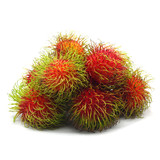 Rambutan on white background