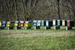 Obrazy na płótnie, fototapety, zdjęcia, fotoobrazy drukowane : Wood bee hive