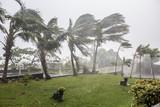 "Cyclone ""Bejisa"" raging, La Réunion"