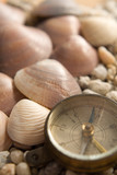 Sea Shells, compass with marks of use and  stones