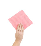 Hand holds pink cleaning sponge.