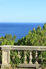 scene in the Crimea Black Sea vertical