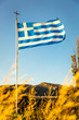 greek flag 2