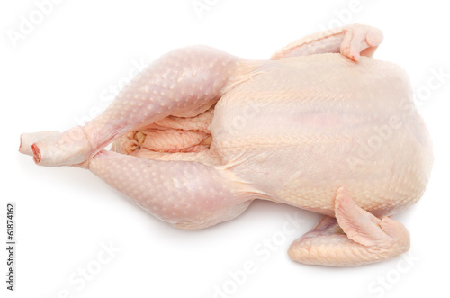 Chicken prepared for roasting