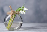 Beautiful bouquet of snowdrops in vase on light background