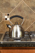 Stainless Steel Tea Pot on Range