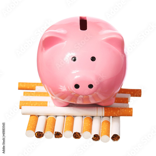 Poster Piggy Bank on pile of Cigarettes isolated on white.