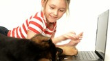 little cute girl, laptop and Shepherd puppy