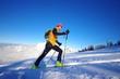 ski de randonnée - chartreuse