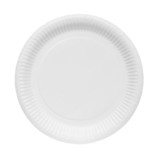 Disposable paper plate isolated on a white background.