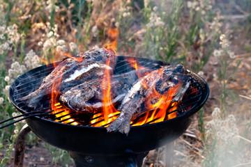 Sea Bream Fish Grilling On BBQ