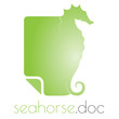 Seahorse note logo