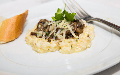 Mushroom Risotto Appetizer