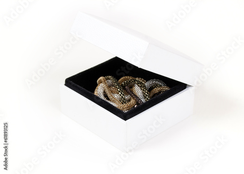 Precious chains in a gift box