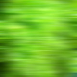green nature abstract background