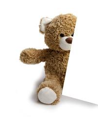 ours en peluche et carton de publicité