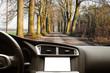 viaggiare tra gli alberi