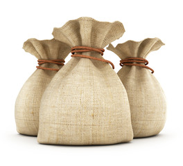 A view of three bags on white background