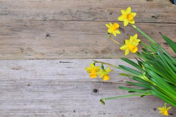 Frühling Holz Hintergrund