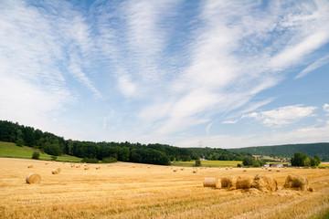 Sommerfeld mit Strohballen