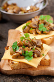 Toast sandwich with mushroom, cheese and parsley,selective focus