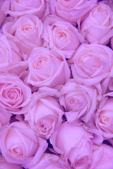 Pale pink wedding flowers