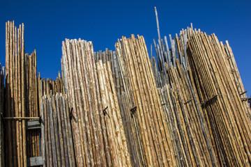 kavak ağacı&marangoz stok ürünleri