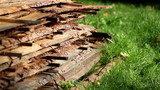 Wood sawmatrial planks piled