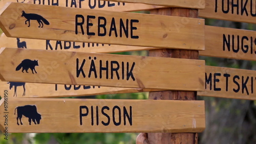 Wooden sign post where there is directions